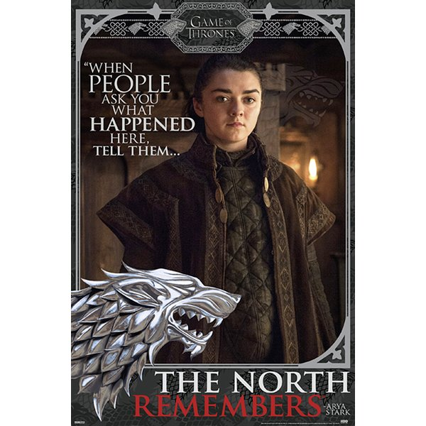 Game of Thrones Poster Arya