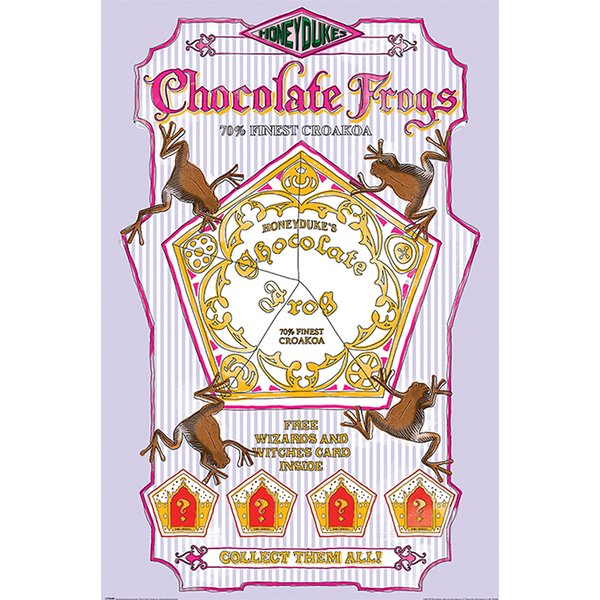 Harry Potter Poster Chocolate