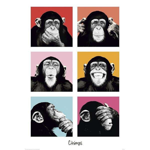 Monkey Poster Collage