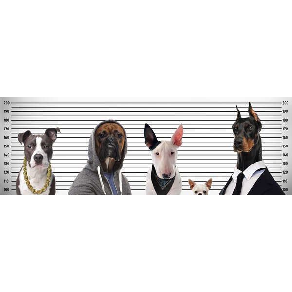 Most Wanted Dogs Poster