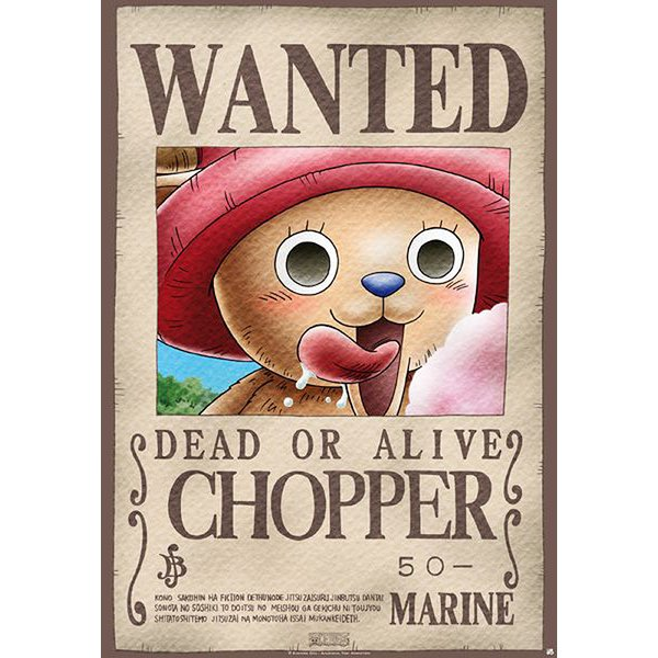 One Piece Poster Wanted