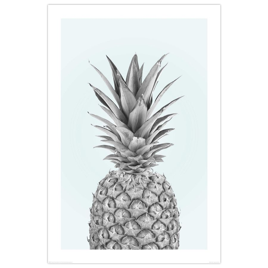 pineapple poster ananas bei close up g nstig bestellen. Black Bedroom Furniture Sets. Home Design Ideas
