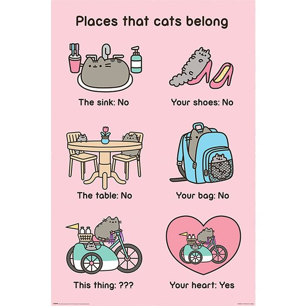 Pusheen Poster Places Cats