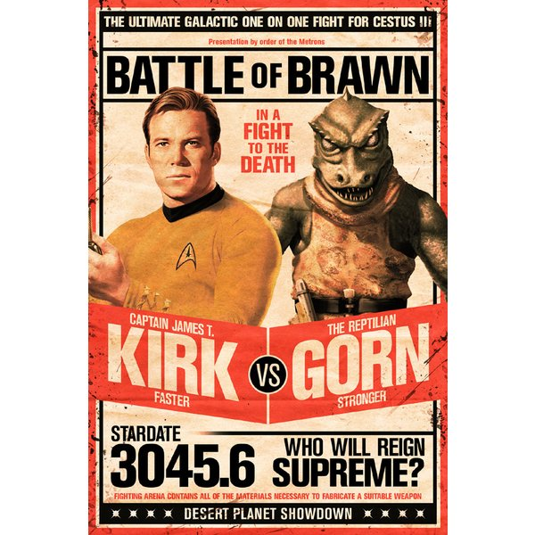 Star Trek Poster Kirk vs