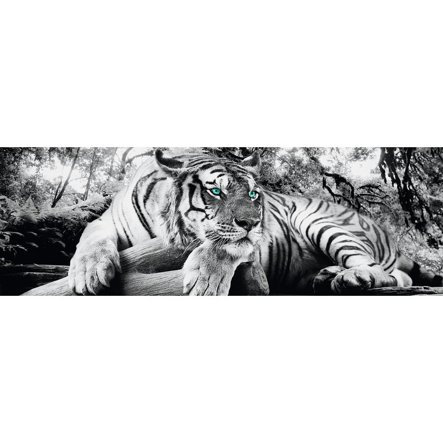 Tiger is watching you Poster